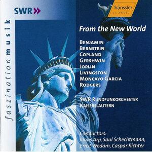 South West German Radio Kaiserslautern Orchestra Foto artis