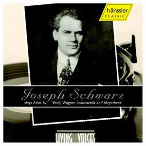 Schwarz, Joseph Foto artis