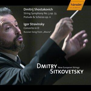 New European Strings Chamber Orchestra Foto artis