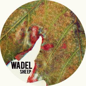 WADEL Foto artis