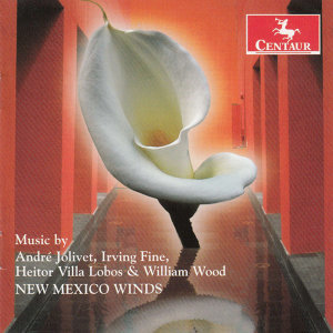 New Mexico Winds Foto artis