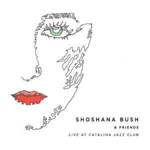 Shoshana Bush 歌手頭像