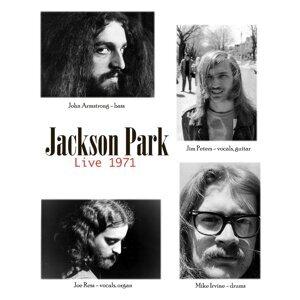 Jackson Park Foto artis