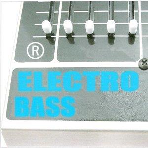 Electro bass Foto artis