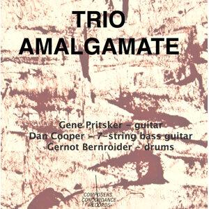 Trio Amalgamate Foto artis