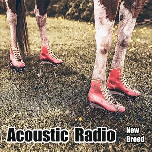 Acoustic Radio Foto artis