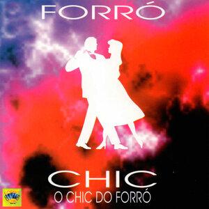 Banda Forró Chic Foto artis