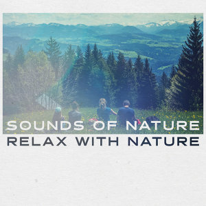 The Sounds of Nature Foto artis