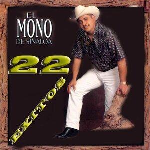 El Mono De Sinaloa Foto artis