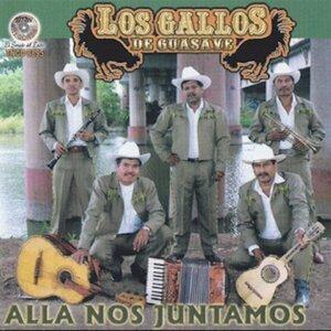 Los Gallos De Guasave Foto artis