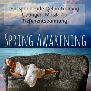 Relaxing Spa Music & Piano Music Songs & Liquid Relaxation Foto artis