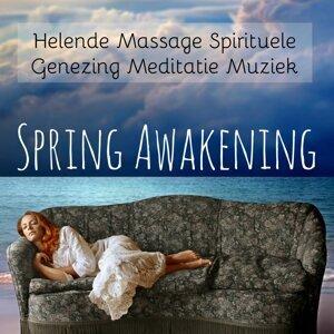 Nature Sounds Relaxation: Music for Sleep, Meditation, Massage Therapy, Spa & Kundalini Yoga Music & Yoga Meditation Relaxation Music Foto artis