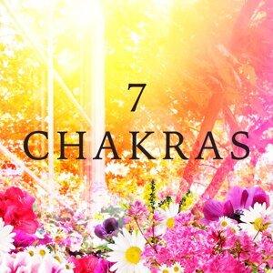 Chakra Alchemy & Relaxation Music & Musica Reiki Foto artis