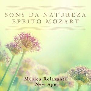 Mind Entrainment Doctor & White Noise Therapy & Sons da Natureza & Relaxamento Foto artis