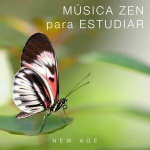 Musica Para Estudiar Academy & Deep Sleep Relaxation & Wellness Shades Foto artis