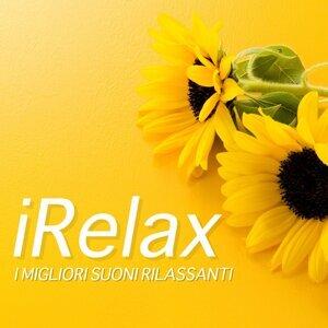 Best Hawaiian Luau & Indiani d'America Rilassamento e Meditazione & Sounds of Nature Relaxation Foto artis