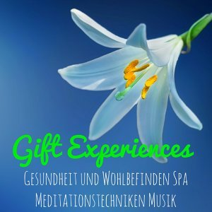 Relaxation Yoga Instrumentalists & Natural Relaxation Music Club & Entspannungsmusik & Wellness Foto artis