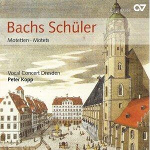 Dresden Vocal Concert Foto artis