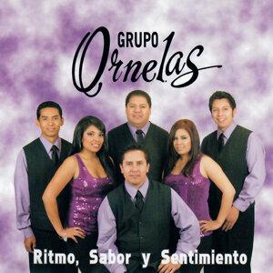 Grupo Ornelas Foto artis