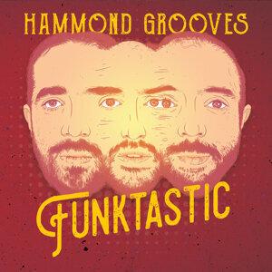 Hammond Grooves Foto artis