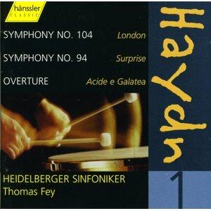 Heidelberger Sinfoniker Foto artis