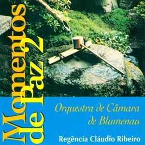 Cláudio Ribeiro, Orquestra de Câmara de Blumenau Foto artis