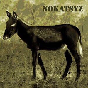 Nokatsyz Foto artis