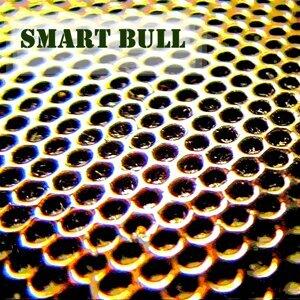 Smart Bull Foto artis