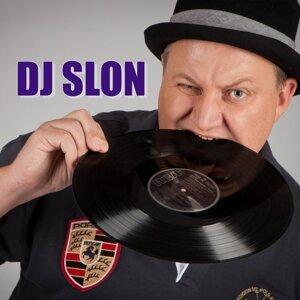 DJ SLON & LILI Foto artis