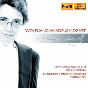 Mannheim Mozart Orchestra Foto artis