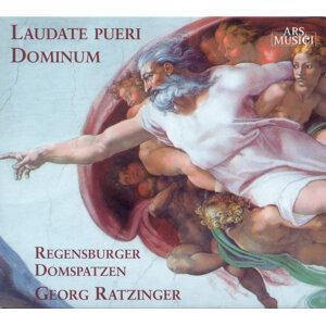 Regensburg Cathedral Choir Foto artis