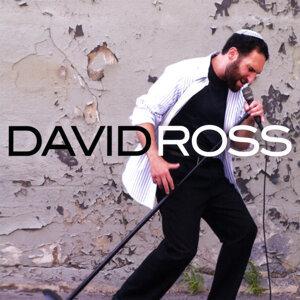 David Ross Foto artis
