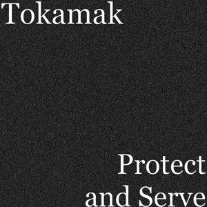 Tokamak Foto artis