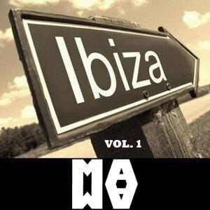 DJ Zoli, Daviddance, Sostanza Tossica, Hector DJ, Dries Tessens, Duet Delony DJ's Foto artis