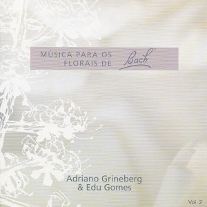 Edu Gomes & Adriano Grineberg Foto artis