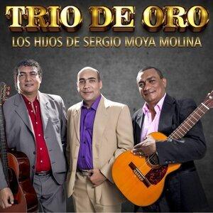 TRIO DE ORO Los Hijos De Sergio Moya Molina Foto artis