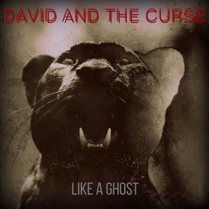 David and the Curse Foto artis