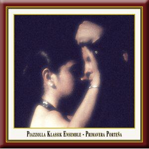 Piazzolla Klassik Ensemble Foto artis