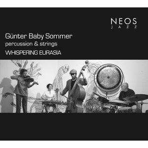 Gunter Baby Sommer Percussion and Strings Foto artis