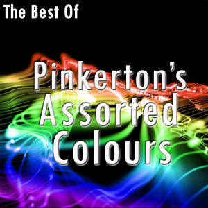 Pinkerton's Assorted Colours 歌手頭像
