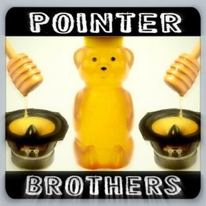 The Pointer Brothers Foto artis