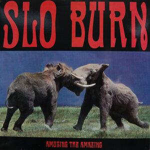 Slo Burn Foto artis