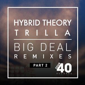 Hybrid Theory & Trilla Foto artis