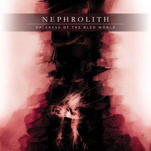 Nephrolith Foto artis
