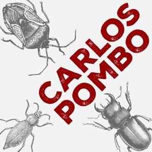 Carlos Pombo Foto artis