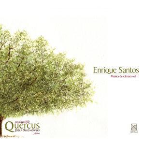 Quercus Ensemble Foto artis