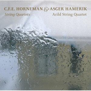 Arild String Quartet Foto artis