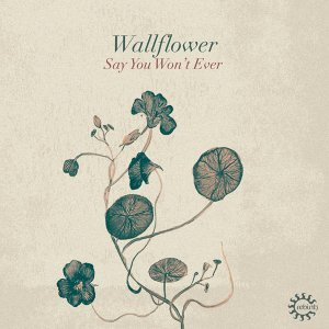 Wallflower 歌手頭像