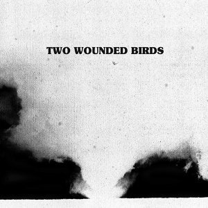 TWO WOUNDED BIRDS 歌手頭像