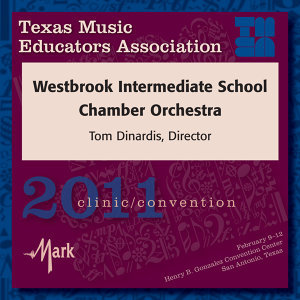 Westbrook Intermediate School Chamber Orchestra Foto artis